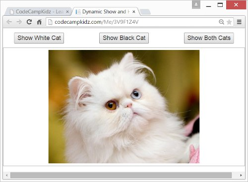 JQuery Show & Hide Effects